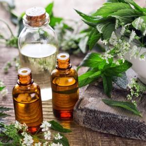アロマオイルと植物